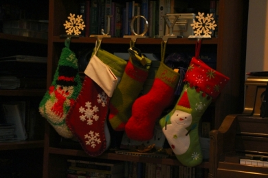 The stockings were hung by the bookcase with care